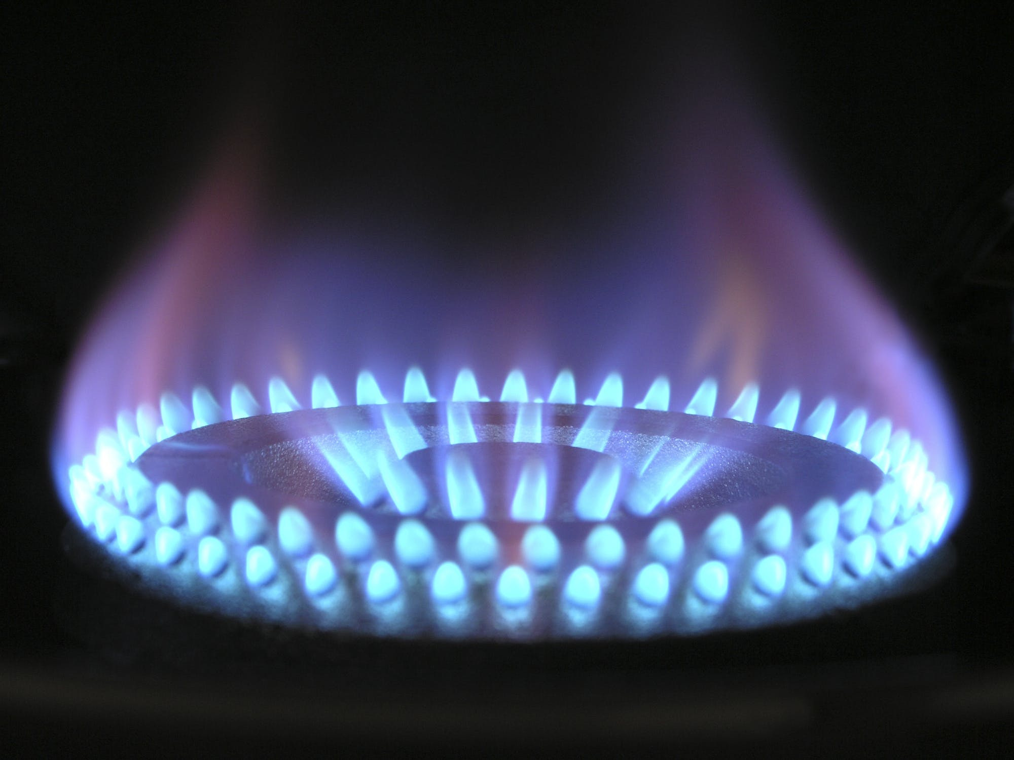 Eurogas – Heating poll survey